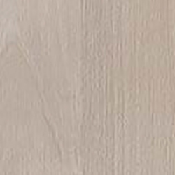 Angora Oak